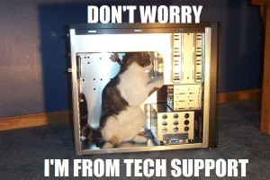 tech support cat